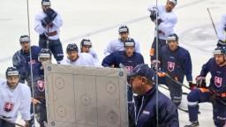 MS v ľadovom hokeji sa blížia, naša reprezentácia nastúpi v máji