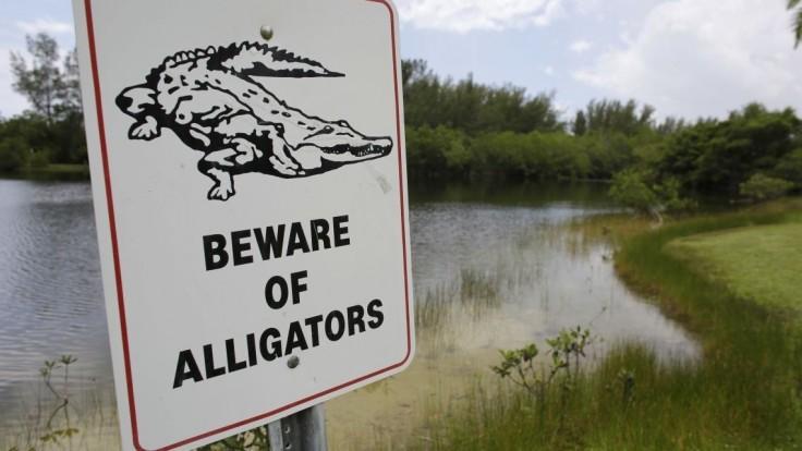 Študenti si na internát doniesli aligátora, za fotky ich napomenuli