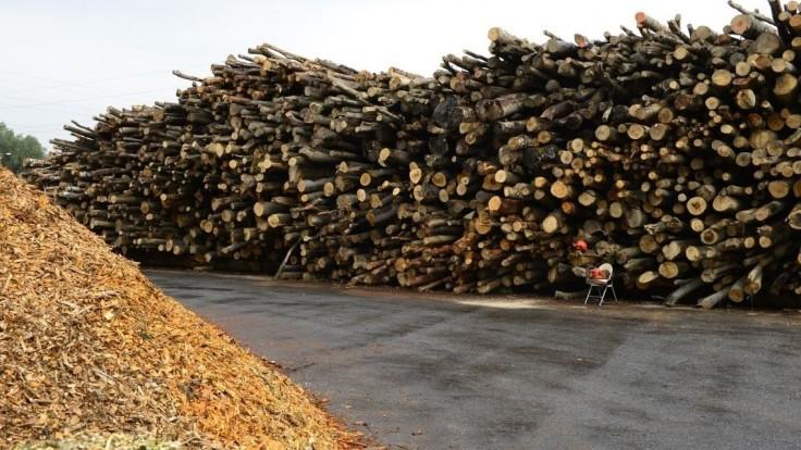 Dotácie na drevodomy sú podľa Remišovej nezmyselné a mali by ich zrušiť