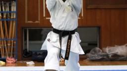 Slovenská výprava získala v karate na ME významný počet medailí