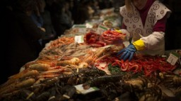 Nový druh kreviet zabíja rybky silným zvukom, pomenovali ho po rockovej kapele