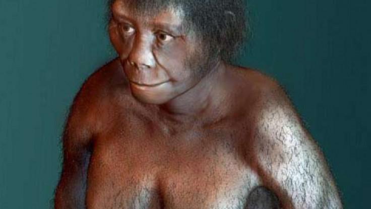 Hobiti žili aj v dobe moderných ľudí. Vedci konečne odhalili ich pôvod