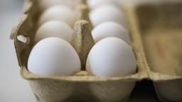 Inšpektori našli ďalšie dva výrobky so škodlivým pesticídom