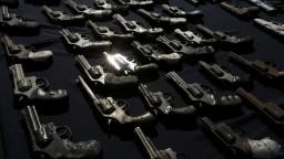 Zbraňová amnestia bola úspešná, občania odovzdali menej zbraní