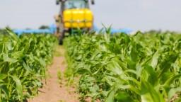 Vypestovali sme najviac produktov rastlinnej výroby v Únii