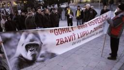 Tím Gorila opäť vyšetruje kauzu fiktívnych darcov SDKÚ