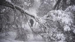 Moskvu trápi snehová kalamita, spôsobila viaceré škody