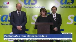TB SaS o ministerke pôdohospodárstva a talianskej mafii