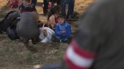 Utečenci v Nemecku čelia agresivite domácich, napočítali stovky zranených