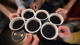 Káva udržuje ľudstvo čulé. Aj jej však hrozí, že vyhynie