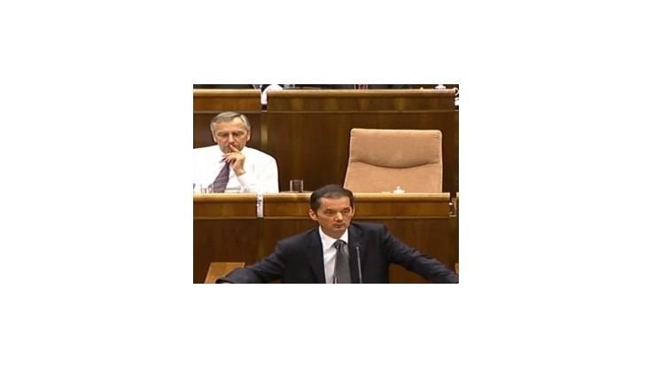 SNS bude hlasovať proti eurovalu a súčasnej vláde
