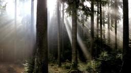 Planéta oslavuje, Deň Zeme si pripomíname už takmer polstoročie