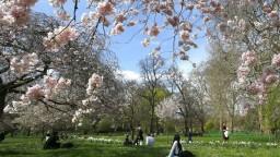 Máme nezvyčajný apríl. Podľa meteorológov môže byť aj rekordný