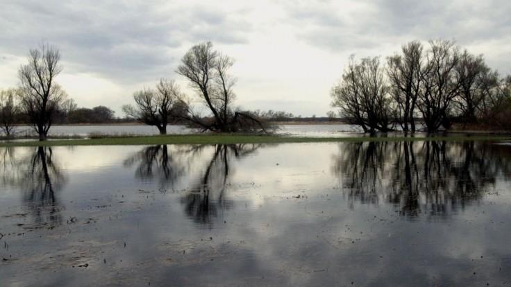 Časti tela, ktoré našli v rakúskom jazere, patria Slovenke