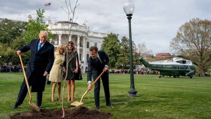 Strom, ktorý Macron a Trump zasadili pri Bielom dome, niekam zmizol