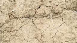 Klimatológ varuje: Ak poriadne nezaprší, môžeme čakať katastrofu