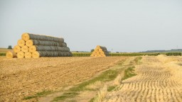 Základy zneužívania agrodotácií mali podľa SaS položiť pred 10 rokmi