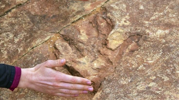 V Tatrách objavili pamiatky po dinosauroch. Ako sa dostali k nám?