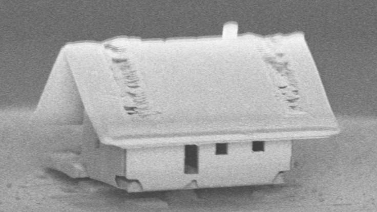V najmenšom domčeku na svete môžu bývať iba tak baktérie