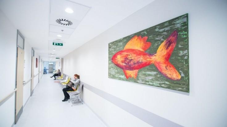 Lekári na pohotovostiach budú slúžiť povinne podľa rozpisu