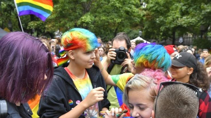Spojte sa do jedného prúdu, vyzýva SaS gejov a ich odporcov