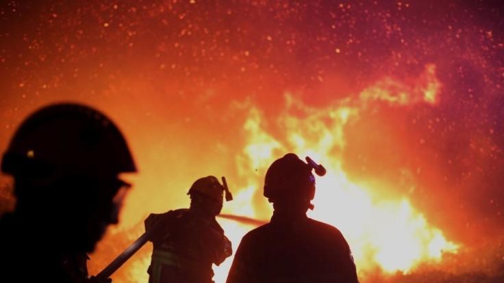 Desiatky hasičov bojovali s horiacim poľom, zapálilo ho zviera