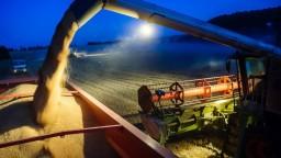 Úroda obilia je slabšia, Európa sa pripravuje na nedostatok