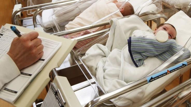 Holandskom otriasol škandál. Pokus s Viagrou neprežilo 11 novorodencov