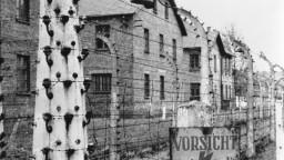 Historička o rómskom holokauste: Rómovia boli pre Nemecko hrozbou