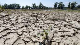Odborníci varujú. Problémy so suchom sa na Slovensku zhoršia