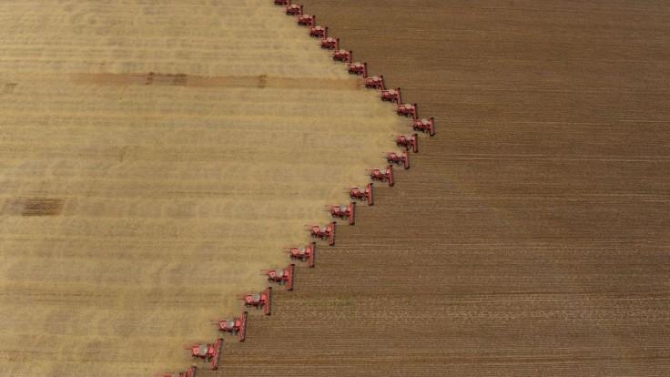 Ani bežné dávky pesticídov nie sú bez rizika. Čo spôsobujú?