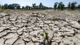 Hladina Dunaja je extrémne nízka, situácia je vraj katastrofálna