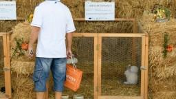 Jednou z hlavných tém Agrokomplexu je podpora slovenských výrobkov