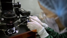 Vedci upravovali DNA detí, Čína po kritike ich prácu stopla