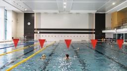 Milovníci plávania oslávili sviatky športom, sily si zmerali v 3 mestách