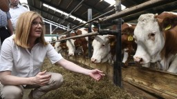 Nepredávajte poľské mäso, vyzvala Matečná obchodné reťazce