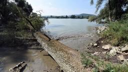 Lesy v Bratislave rozdelia do troch zón, zvýšia tak ich ochranu