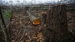 Nízke Tatry mohli vyzerať inak, nový zákon posilňuje ochranárov