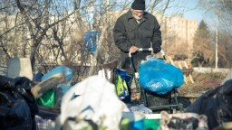 Kapacity útulkov v Košiciach nestačia, jednému hrozí zatvorenie