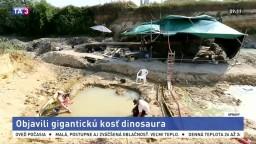 Vzácny nález. Vedci našli viac ako dvojmetrovú kosť dinosaura