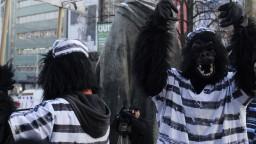 Šéf vyšetrovateľov kauzy Gorila odchádza z polície do civilu