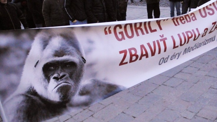 Zlý signál pre ľudí. Politici reagovali na odchod šéfa z tímu Gorila