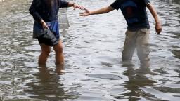 V uliciach indického mesta útočia krokodíly, priniesla ich záplava