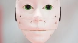 Vzťahy s robotmi a vylepšené mozgy. Do 10 rokov vraj prídu zmeny