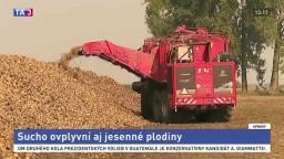 Horúčavy ovplyvnia jesenné plodiny, na dážď sa spoliehať nestačí