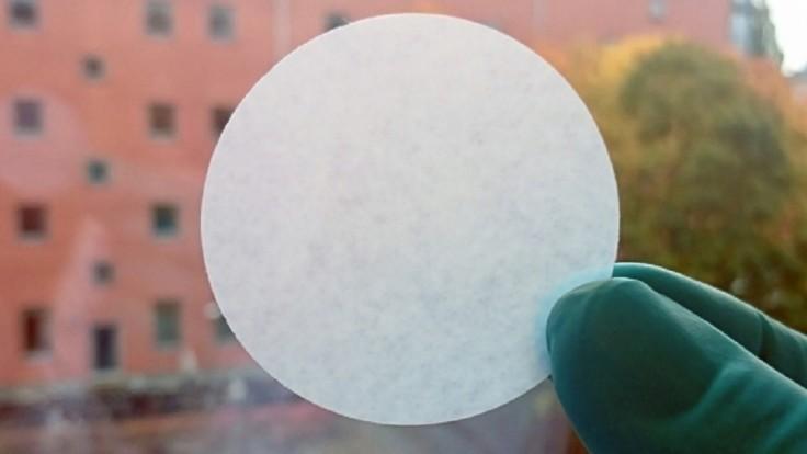 Papier vytvorený z rias dokáže z vody odfiltrovať nebezpečné patogény