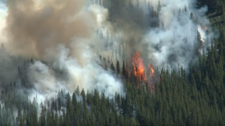 Za lesnými požiarmi sú mimovládky, myslí si brazílsky prezident