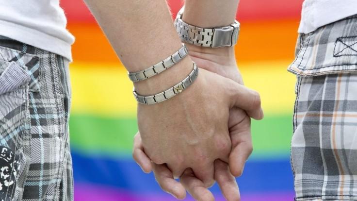 Sulíkovci chcú uzákoniť nový pojem, bol by pre gejov z cudziny