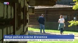 Slovenským skanzenom hrozí skaza, ohrozuje ich zákerný hmyz