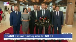 TB predstaviteľov strany OĽANO po neotvorení mimoriadnej schôdze